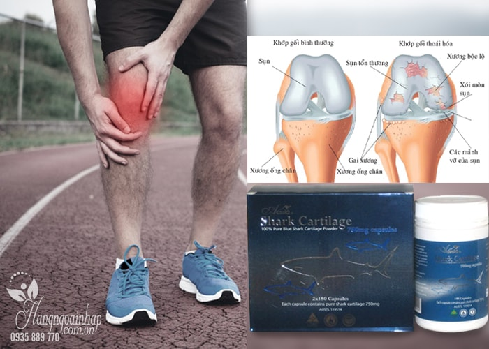 sun-vi-ca-map-uc-shark-cartilage-aussia-750-mg-2-x-180-vien-2