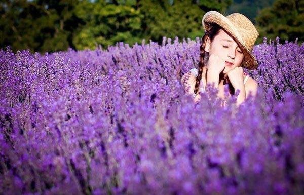 sua- tam - bathox - lavender - 500ml (2)